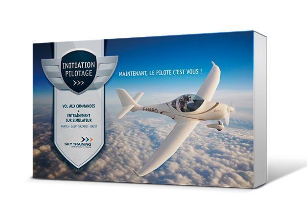 initiation au pilotage d 39 avion bapt me de l 39 air simulateur de vol. Black Bedroom Furniture Sets. Home Design Ideas